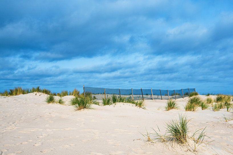Düne an der Küste der Ostsee in Warnemünde von Rico Ködder