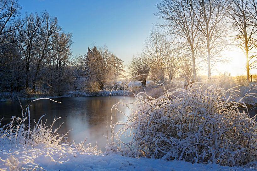 bevroren meer en besneeuwde struiken na zonsopgang, landschap op een koude winterdag, kopieerruimte van Maren Winter