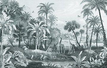 Botanische vintage jungle plaat met giraffen en vogels van Studio POPPY