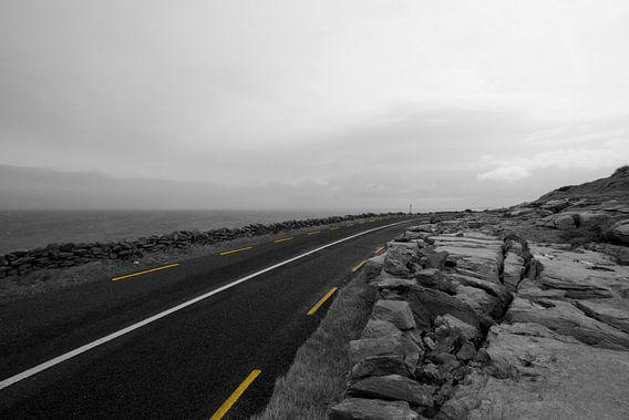 Yellow Road  van Sander Monster
