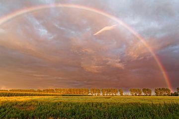 Regenboog in de avondhemel van Rolf Pötsch