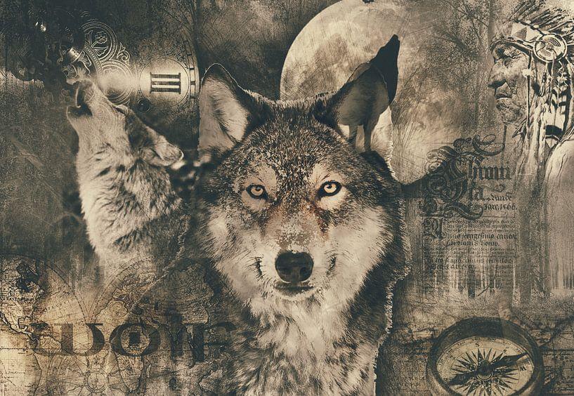 Der Wolf von Bert Hooijer