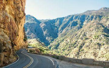 Kings Canyon National Park van Tashina van Zwam