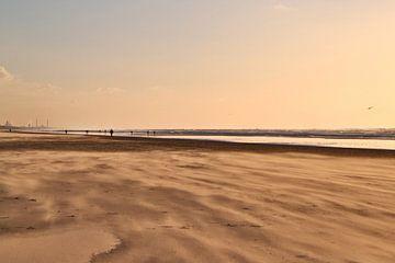 Zandstorm op het strand van