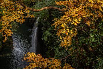 Een blik op de waterval in de Takachiho kloof in Kyushu, Japan van Anges van der Logt