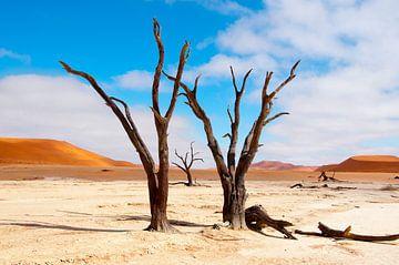 Kunst in een droge woestijn... sur Aisja Aalbers