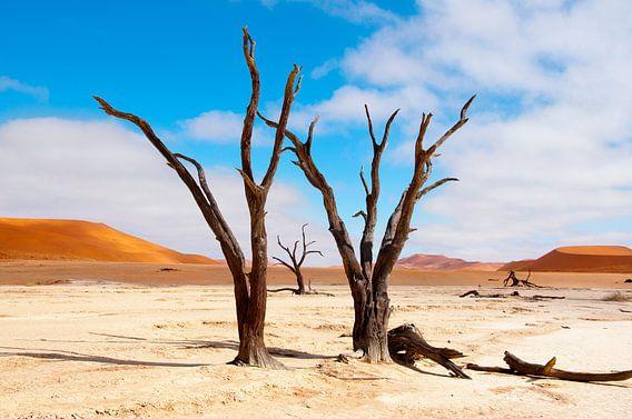 Kunst in een droge woestijn...