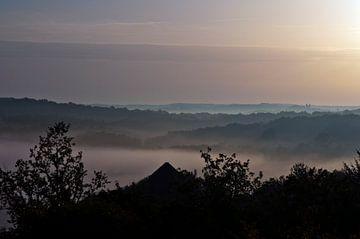 Morning Fog in Southern West of France van Silva Wischeropp