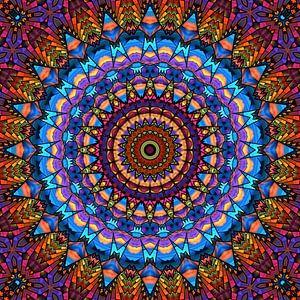 Mandala - de wereld is kleurrijk van
