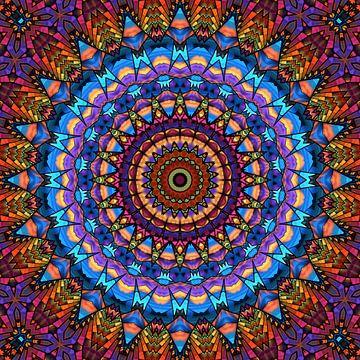 Mandala - de wereld is kleurrijk van Marion Tenbergen