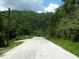 Road to Trinidad van Dionijsius Horik