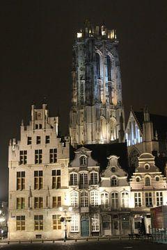 De Sint-Romboutskathedraal bij nacht von Charella Hulsbosch
