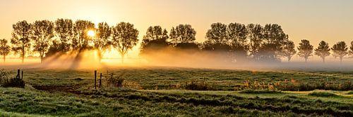 Hollands polderlandschap van