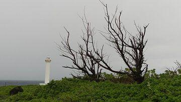 Cape Zanpa - Okinawa - West Coast van Daniel Chambers