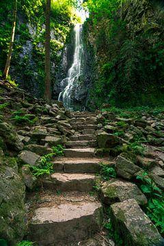 Die Treppe zum Burgbachwasserfall von Christian Klös