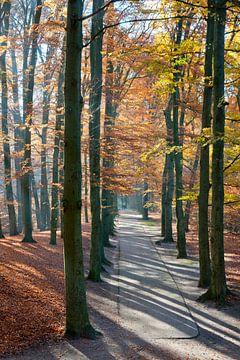 Park Sonsbeek in Arnhem van Tamara Witjes