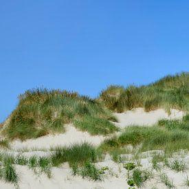 Dunes de sable avec herbe de dunes près de la mer un jour d'été sur Sjoerd van der Wal