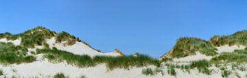 Duinen met duingras bij de zee op een zomerse dag van Sjoerd van der Wal