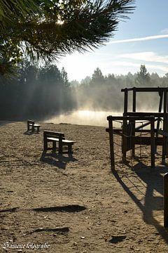 Morgennebel von Simone van der Heide