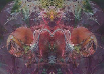 Die Krone der Schöpfung von Andreas Schulte