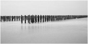 palen in het water