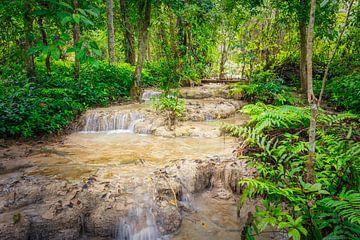 Rapids durch den Wald am Kuang Si Wasserfall, Laos von Rietje Bulthuis