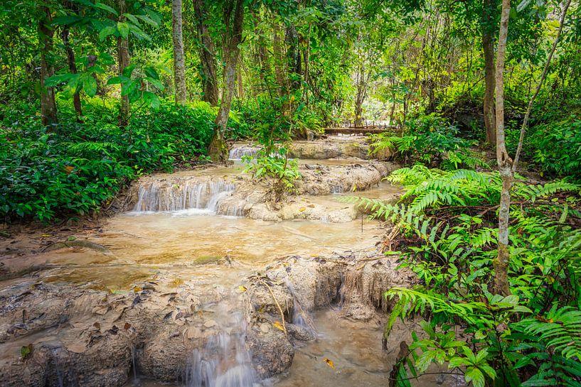 Stroomversnelling door het bos bij de Kuang Si waterval, Laos van Rietje Bulthuis