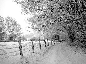 Chemin de neige van Christine GUILLET