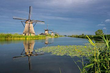Windmolens van Kinderdijk van Kim Claessen