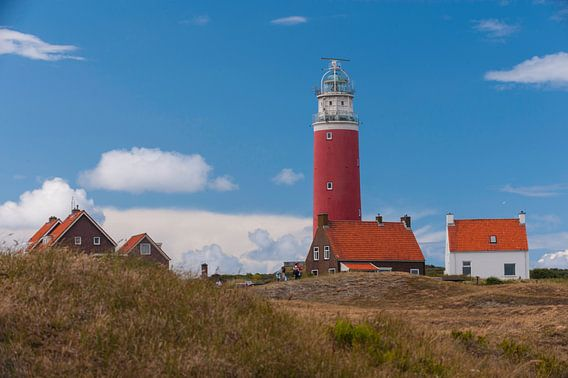Lighthouse on the Island van Brian Morgan