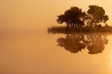 Strabrechtse Heide 228 von Desh amer