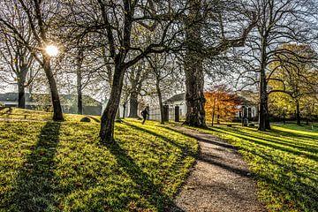 Herfstsfeer in het Leeuwarder stadspark De Prinsentuin van Harrie Muis