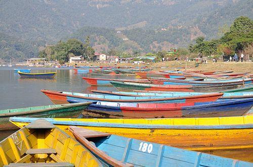 Kleurrijke boten bij het Phewa meer te Pokhara (rechthoek) von