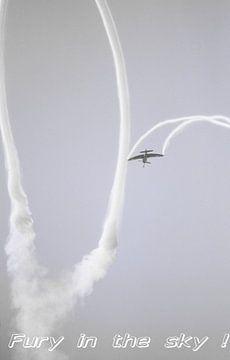 Hawker Sea Fury Motiv 4 van Joachim Serger