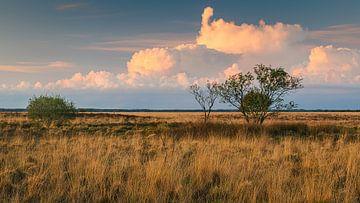 Zonsondergang in Nationaal Park het Dwingelderveld van Henk Meijer Photography