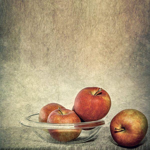 Äpfel von Vera Kämpfe