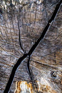Een hart van hout van Rik Verslype