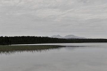Schwedischer See, norwegische Berge von Mirjam van Vooren