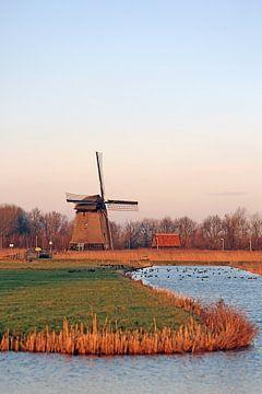 Mühle entlang des Hoornse Vaart Alkmaar von Ronald Smits