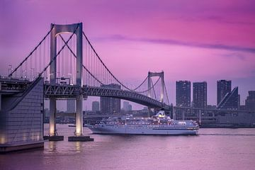Cruiseschip onder de Regenboogbrug van Tokio. van Kuremo Kuremo