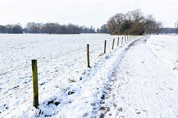 Verschneite Landschaft mit Wanderweg durch Wiese in Saison Winter von Ben Schonewille