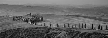 Monochrome Toskana im Format 6x17, Podere Baccoleno von Teun Ruijters