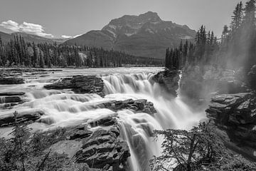 Athabasca Wasserfälle von Eelke Brandsma
