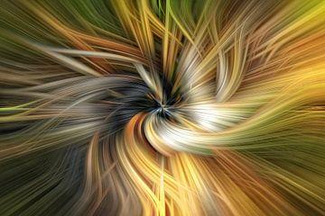 Oranje zwart gat van Jan van Reij