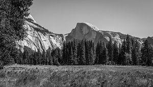Half dome ,Yosemite van