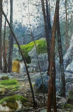 La terre et la nature en montagne sur KB Prints
