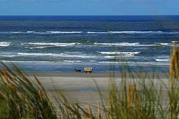 Huifkar Terschelling langs de vloedlijn  van Elfriede de Jonge Boeree