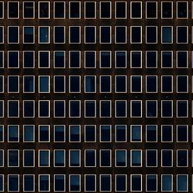 Blauw raam van Maerten Prins