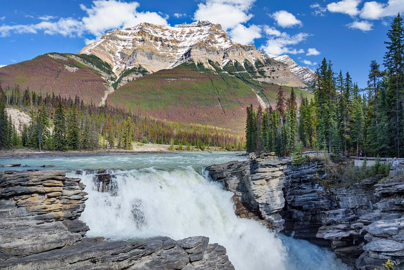 Athabasca waterval in Jasper Nationaal Park, Canada van Rietje Bulthuis