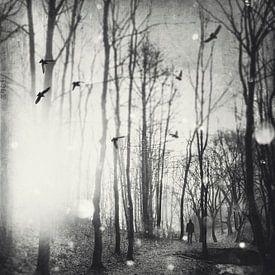 Wit licht van Dirk Wüstenhagen